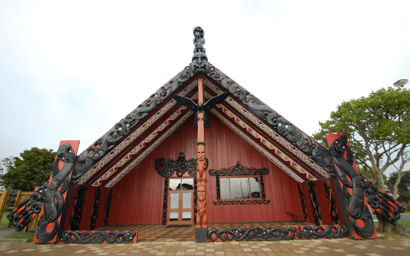Tamaki Hikoi / Maori Guided Walks of Auckland